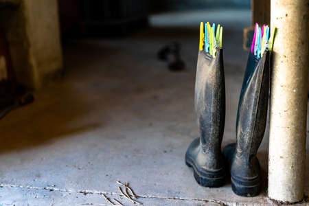 Rubber boots are locked in a stall with colorful clothespins. working boots