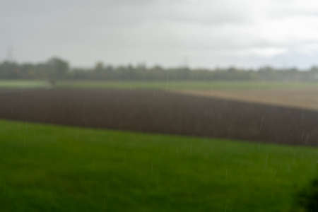heavy rain in bad weather over a meadow in the country.