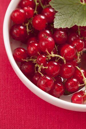 Rad currant in white bowl with red background