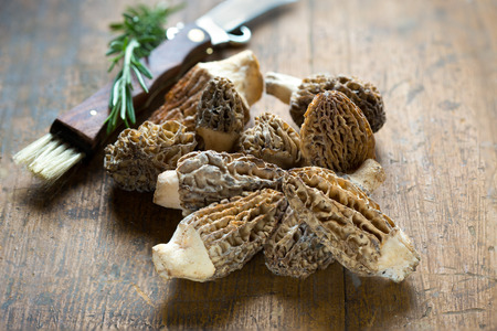 Fresh Morels Mushrooms on rustic background