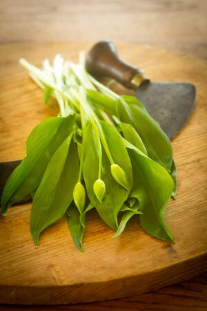 Fresh ramsons on a rustic wooden plate