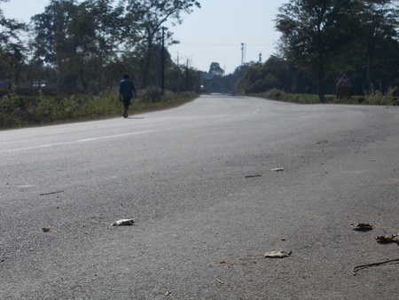 A lonely man walking through a countryside road  photo