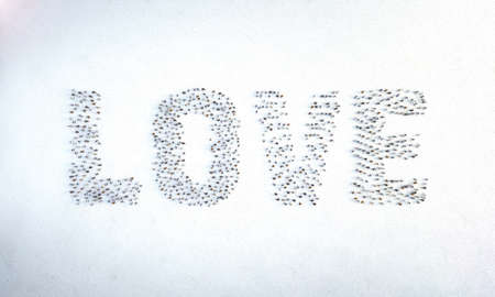 Love word made by people. Crowd mob of people symbols word of Love. Team social concept. Flat lay top view. 3D rendering