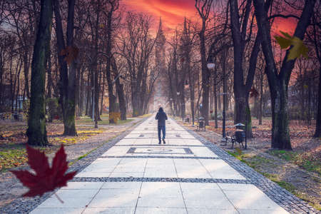 Autumn park alley with beautiful sunrise sky. Fall scene in city park with autumn leaves, trees and man walking on path.