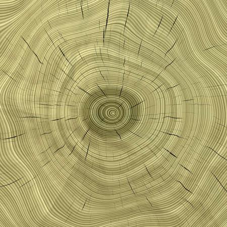 hardwood: wood texture
