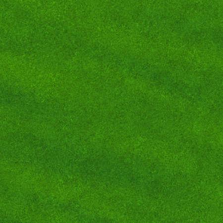 green grass Stock Photo - 20682468