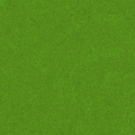green grass Stock Photo - 20682469