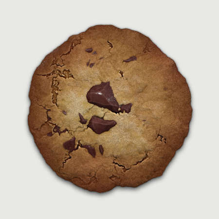 chocolate cookie Stock Photo - 21953788