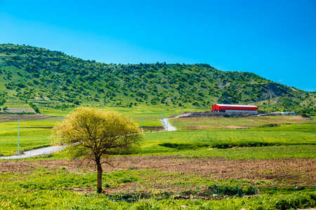 Iraqi countryside in spring season Stock Photo