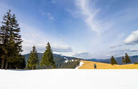 piny: Lonely man in mountains standing near  pine trees in winter day