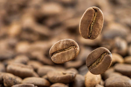 Flying fresh coffee beans as a background with copy space. Coffee beans falling down with white steam vapour. Stock Photo
