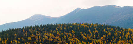 The mountain autumn landscape with colorful forest. Colorful autumn landscape in the Carpathian mountains. Deciduous forest in hills.