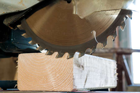 Circular saw cutting wooden plank. Blade with board close-up. Woodworking detail with wood. Working equipment carpentry workshop.