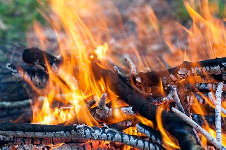outdoor fireplace: Close up of hot burning fire wood coal