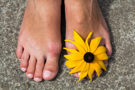 footcare: Close-up of woman feet with flower between toes