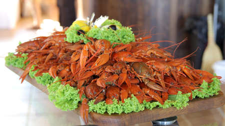 Seafood lobsters. Crabs tentacles on big plate with green salad