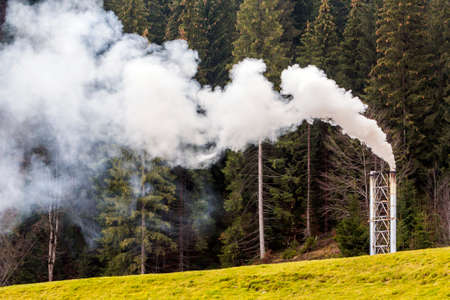 Pipe with thick white smoke in pine forest