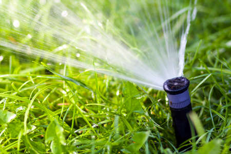 Lawn water sprinkler spraying water over grass in garden on a hot summer day. Automatic watering lawns. Gardening and environment concept. Stock Photo