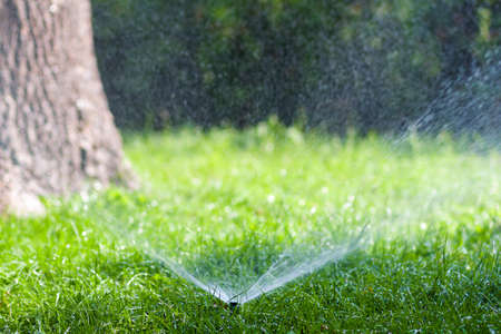 Lawn water sprinkler spraying water over grass in garden on a hot summer day.