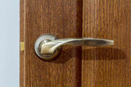 Modern, contemporary satin metal handle on a wooden door close-up.
