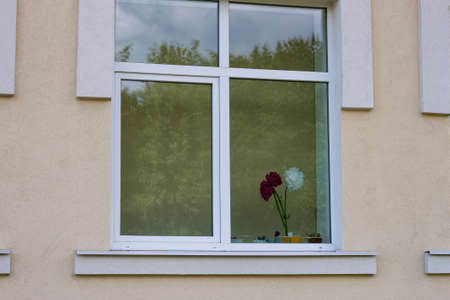 View from outside, light pink plastered kindergarten or school wall and big clean window with bouquet of bright artificial white and dark red paper flowers and reflection of green trees in glass.
