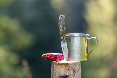 Close-up composition of folding pocket knife stuck vertically in tree stump, sausage and tin mug outdoors on dark green forest blurred background. Tourism, traveling, snack, active lifestyle concept. Banque d'images