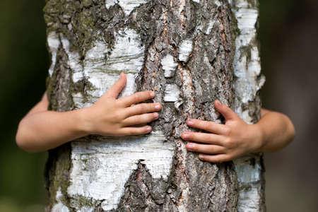 Detalle de primer plano del tronco de árbol fuerte grande y creciente aislado abrazado por detrás por las manos del pequeño niño blanco sobre fondo borroso. Amor a la naturaleza, cuidado del futuro y concepto de protección del medio ambiente.