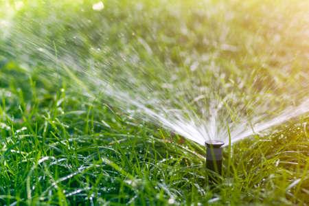 Rasenwassersprinkler, der an heißen Sommertagen Wasser über grünes frisches Gras im Garten oder Hinterhof sprüht Automatische Bewässerungsausrüstung, Rasenpflege, Gartenarbeit und Werkzeugkonzept.