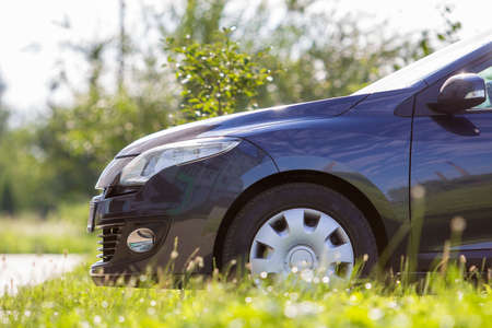 Close-up detail front of modern new shiny empty black car parked outside road in high grass on bright summer sunny day on blurred green trees background. Transport, pollution and ecology concept. Stock Photo