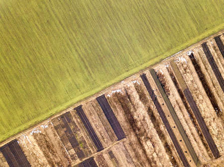 Agricultural landscape from air. Straight narrow ground road between sunny green, dry and brown plowed fields. Imagens