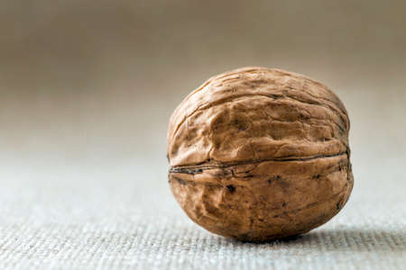 Close-up of walnut in wooden shell isolated on light copy space background. Healthy tasty organic food concept.