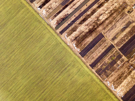 Agricultural landscape from air. Straight narrow ground road between sunny green, dry and brown plowed fields. 版權商用圖片