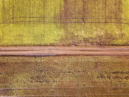 Agricultural landscape from air. Straight narrow ground road between sunny green and brown fields. Imagens