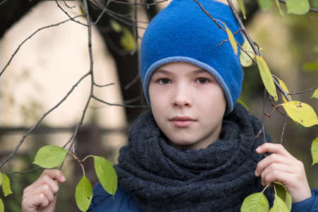 Pretty child boy wearing warm winter clothes holding tree branch with green leaves in cold weather outdoors. Фото со стока