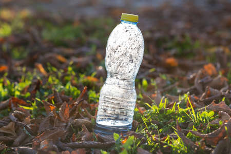 Used plastic bottle thrown away on grass covered ground outdoors. Pollution of nature concept. Reklamní fotografie