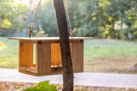 Wooden bird feeder house on a tree in autumn park. Animal wildlife care concept.