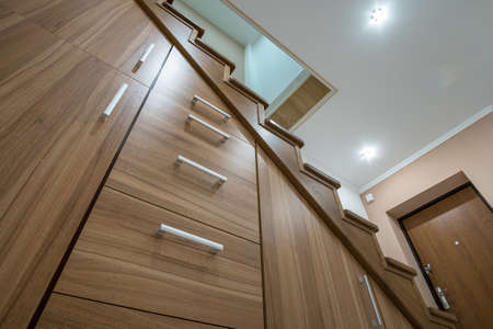 Modern architecture interior with luxury hallway with glossy wooden stairs in multi-storey house. Custom built pullout cabinets on glides in slots under stairs. Use of space for storage.