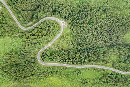Von oben nach unten Luftaufnahme der kurvenreichen Forststraße in grünen Bergfichtenwäldern.