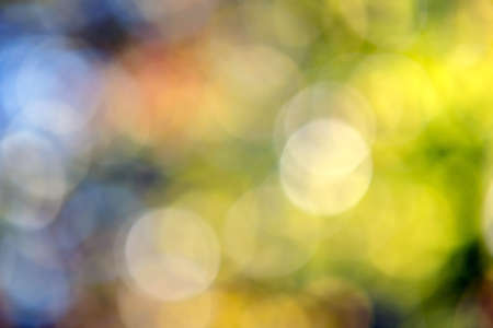 Bright colorful green and yellow background. Blurred light bokeh circles in autumn forest.
