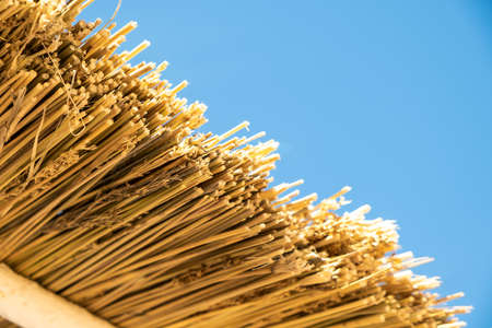 Close up detail of yellow straw roof against blue sky. Stockfoto