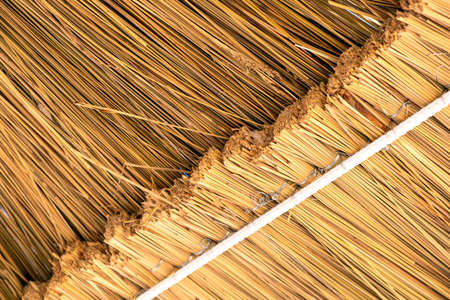 Close up detail of yellow straw roof. 免版税图像 - 151143486