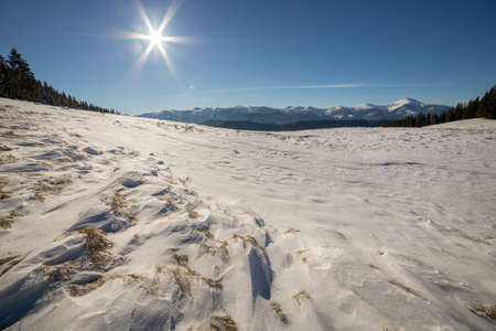Winter landscape panorama with snowy landscape hills, distant white mountains, dark forest and clear blue sky with bright sun.
