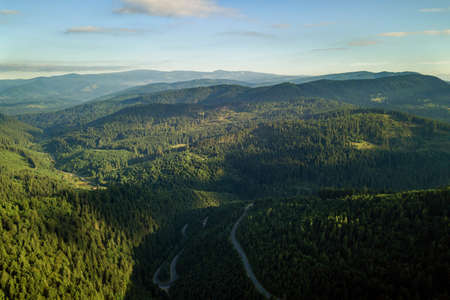 Aerial view of winding road in high mountain pass trough dense green pine woods. Stock Photo