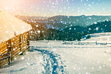 Winter Christmas landscape. Human footprint path in white deep snow at small wooden shepherd hut, spruce forest, woody dark mountain range, large snowflakes on clear blue sky copy space background. Stock Photo