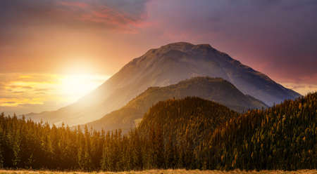 Sunset landscape with high peaks and foggy valley with autumn spruce forest under vibrant colorful evening sky in rocky mountains. 免版税图像