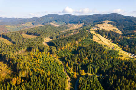 Aerial view of mountain forest with deforestation areas of cut down trees.