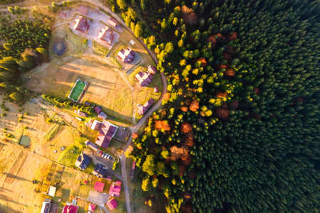 Aerial view of a village houses near dense green pine forest with canopies of spruce trees in autumn mountains. Imagens
