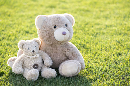 Two cute teddy bear toys hugging together on green grass in summer. 免版税图像