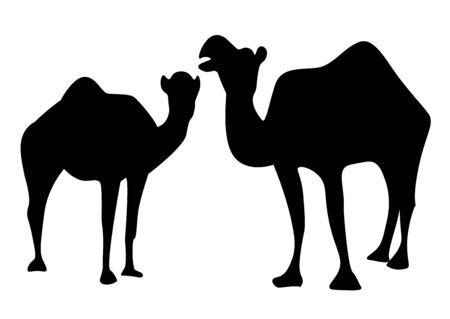 The silhouette of two camels Vetores