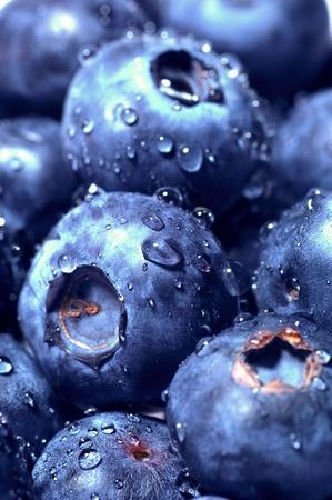 Sweet Blueberry berry closeup photo